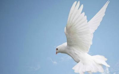なぜ聖霊は肉体がなくても神と呼ばれるの?