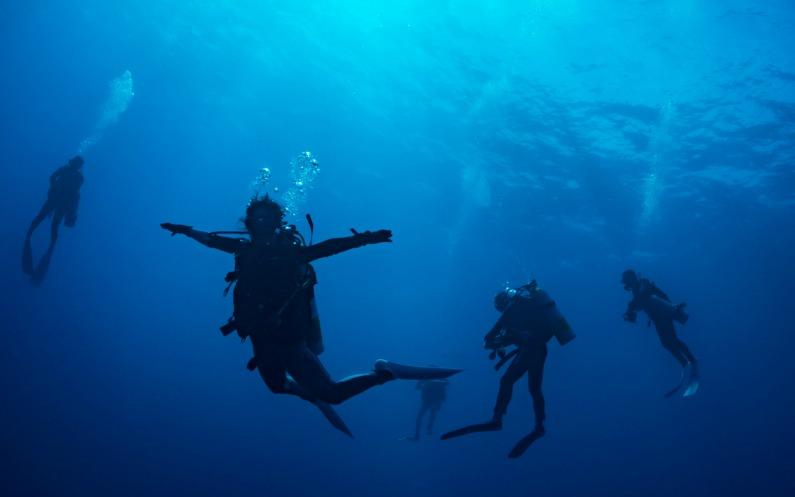 海の中のダイバー達